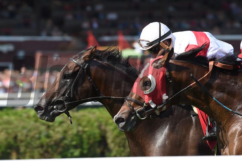 Inspector Lynley wins the 2016 Saranac Stakes.<br /> Coglianese Photos/Chelsea Durand