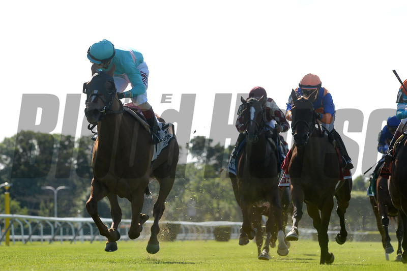 Dacita wins the 2016 New York Stakes. <br /> Coglianese Photos