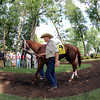 Larry Jones I'm a Chatterbox Delaware Handicap Chad B. Harmon