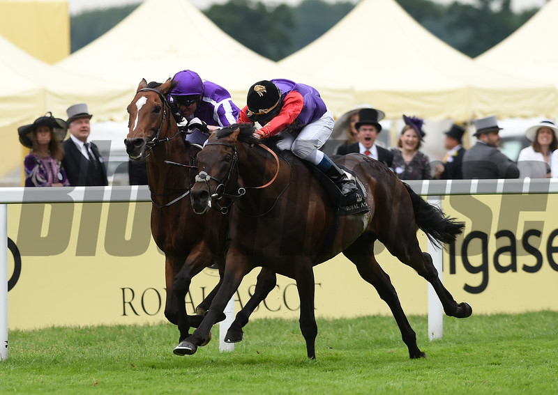 Dartmouth wins the 2016 Hardwicke Stakes at Royal Ascot on June 18, 2016.<br /> Mathea Kelley Photo