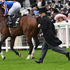 Churchill wins the 2016 Chesham Stakes at Royal Ascot on June 18, 2016.<br /> Aidan O'Brien<br /> Mathea Kelley Photo