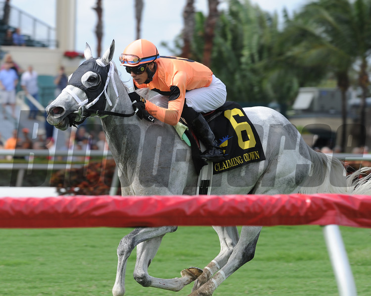 Spectacular Me wins the 2016 Claiming Crown Distaff Dash<br /> Coglianese Photos/Kenny Martin