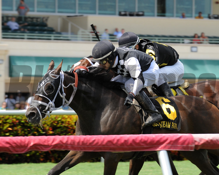 Whiskey Train wins the 2016 Armed Forces Stakes<br /> Coglianese Photos/Kenny Martin