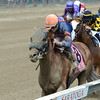 Mind Your Biscuits wins the 2016 Amsterdam.<br /> Coglianese Photos/Chelsea Durand