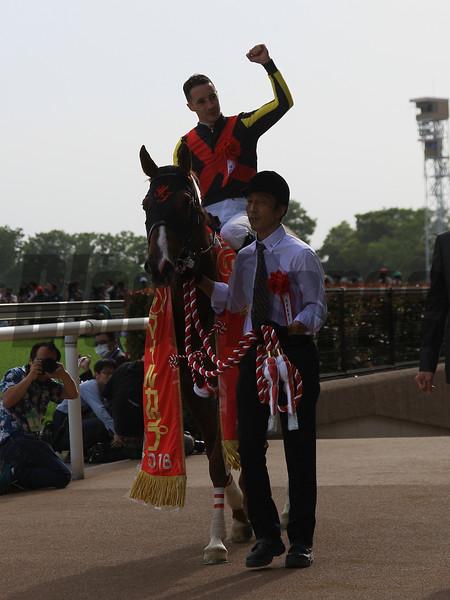 Major Emblem (JPN) wins the NHK Mile Cup in Japan May 8, 2016.<br /> Naoji Inada Photo