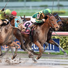 Party Boat wins the 2016 Wait a While Stakes<br /> Coglianese Photos/Lauren King