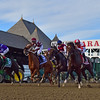 Songbird with jockey Mike Smith leads the field from the gate in the 100th running of The Coaching Club American Oaks Sunday July 24 2016 at the Saratoga Race Course in Saratoga Springs, N.Y. (Skip Dickstein