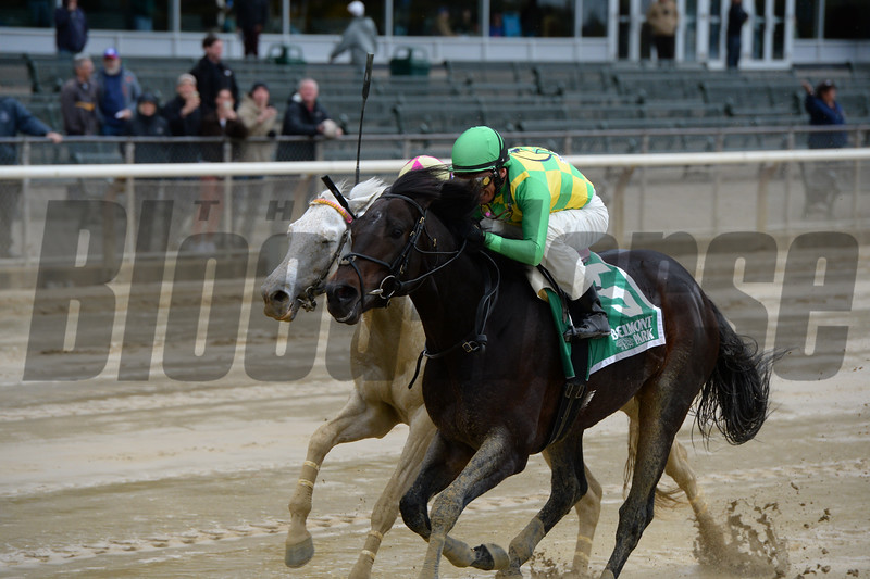 Brother O'Connell wins the 2016 Mohawk Stakes<br /> Coglianese Photos/Joe Labozzetta