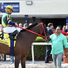 Shaft of Light wins the 2016 Claiming Crown Rapid Transit<br /> Coglianese Photos/Lauren King