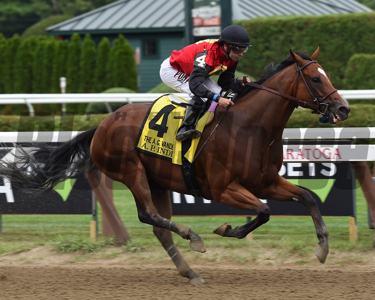A. P. Indian wins the 2016 Alfred G. Vanderbilt Handicap.<br /> Coglianese Photos