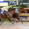 Party Boat wins the 2016 Wait a While Stakes<br /> Coglianese Photos/Leslie Martin