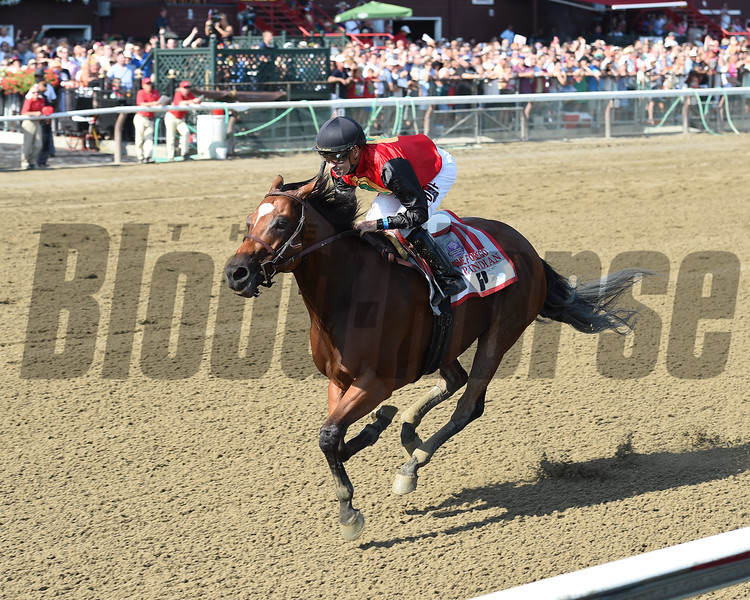 A. P. Indian wins the 2016 Forego<br /> Coglianese Photos/Chelsea Durand