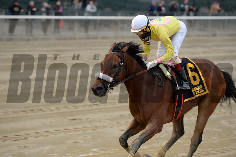 Royal Posse wins the 2016 Empire Classic<br /> Coglianese Photos