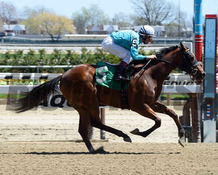 Lady Stardust Maiden Win, April 20, 2016<br /> First winner for Union Rags<br /> Coglianese Photos