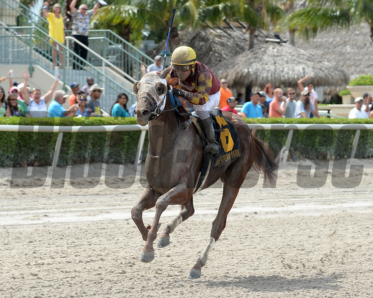 Rated R Superstar wins the 2016 Carry Back Stakes.<br /> Coglianese Photos/Kenny Martin
