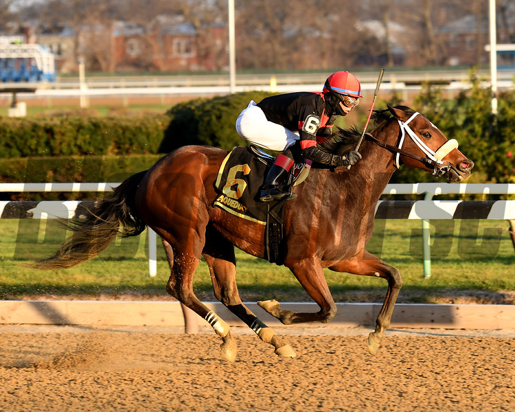 Paulassilverlining wins the 2016 Garland of Roses.<br /> Coglianese Photos