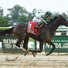 Bar of Gold wins the Critical Eye Stakes at Belmont Park May 30, 2016<br /> Coglianese Photos