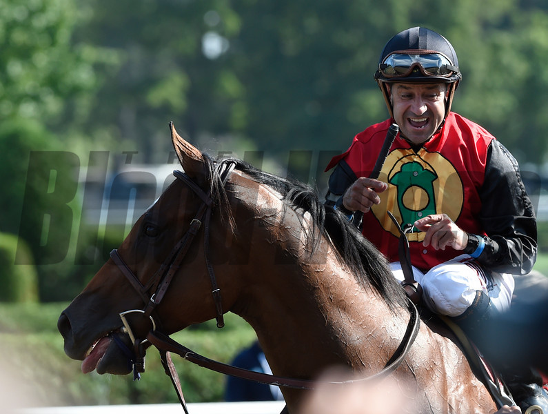 A.P. Indian with jockey Joe Bravo wins the 37th running of the Forego at Saratoga Race Course August 27, 2016 in Saratoga Springs, N.Y.  Photo by Skip Dickstein