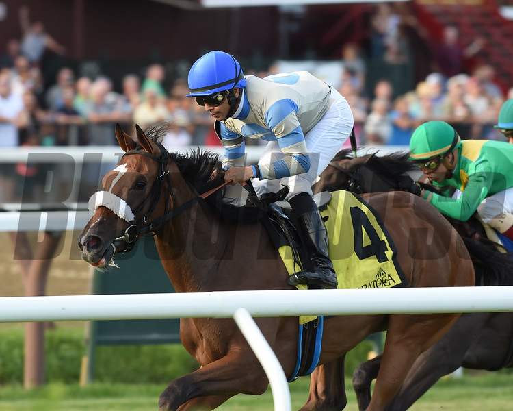 Coasted wins the 2016 P. G. Johnson Stakes<br /> Coglianese Photos/Chelsea Durand