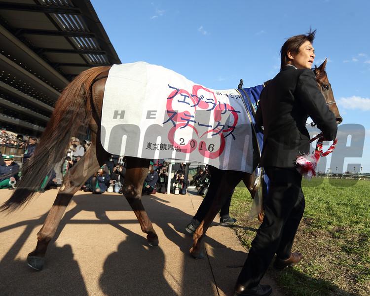 Moanin wins the 2016 February Stakes.<br /> Masakazu Takahashi Photo