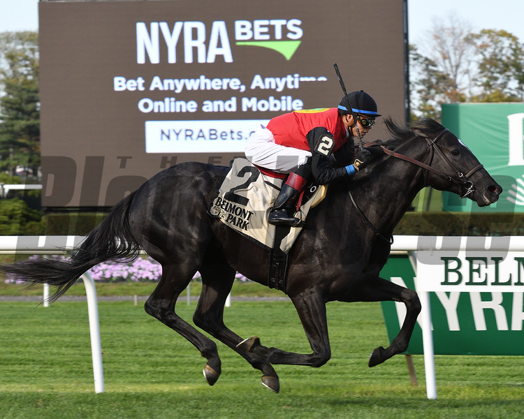 Frostmourne wins the 2016 Awad Stakes.<br /> Coglianese Photos/Annette Jasko