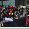 A Shin Hikari (JPN) competed in the Prince of Wales's Stakes at Royal Ascot June 15, 2016