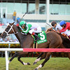 Pink Poppy wins the 2016 Wasted Tears<br /> Coglianese Photos/Kenny Martin