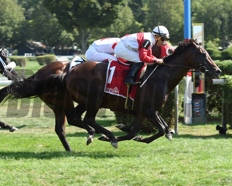 Inspector Lynley wins the 2016 Saranac Stakes.<br /> Coglianese Photos