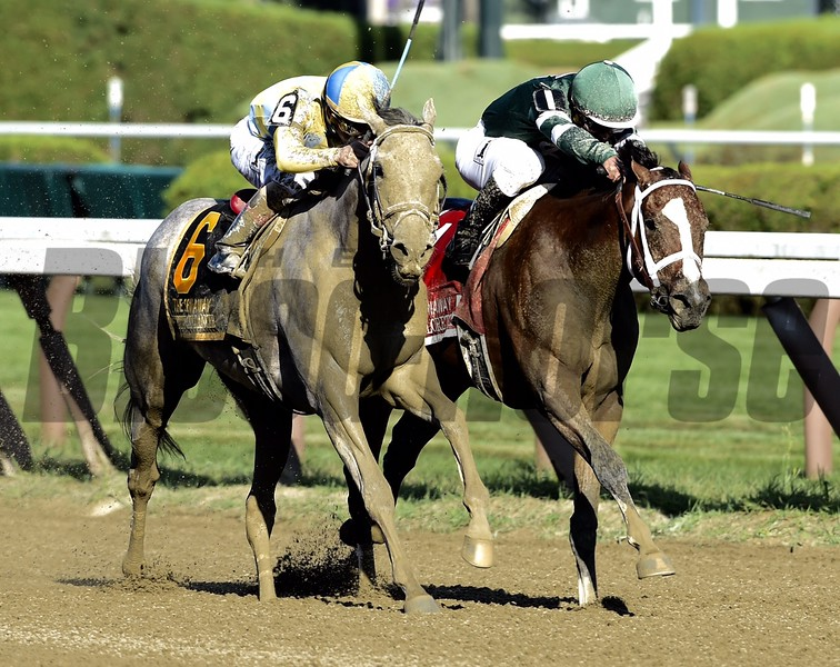 Sweet Loretta (#1) and Pretty City Dancer (#6) dead heat in the 2016 Spinaway Stakes.<br /> Skip Dickstein Photo