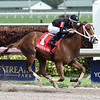 Dearest wins the 2016 Sugar Swirl<br /> Coglianese Photos/Lauren King