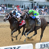Comfort wins the 2016 Seattle Slew Stakes.<br /> Coglianese Photos/Joe Labozzetta