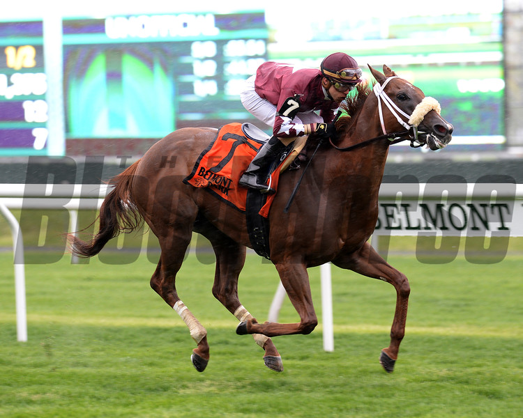 Lady Shipman wins License Fee Stakes May 1, 2016<br /> Coglianese Photos