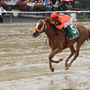 Turco Bravo wins the 2016 Birdstone Stakes.<br /> Coglianese Photos/Jamie Coutler