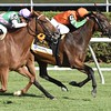 Guapaza wins the 2016 Fasig-Tipton Waya Stakes.<br /> Skip Dickstein Photo