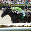 Valid wins the 2016 Skip Away Stakes.<br /> Coglianese Photos/Lauren King