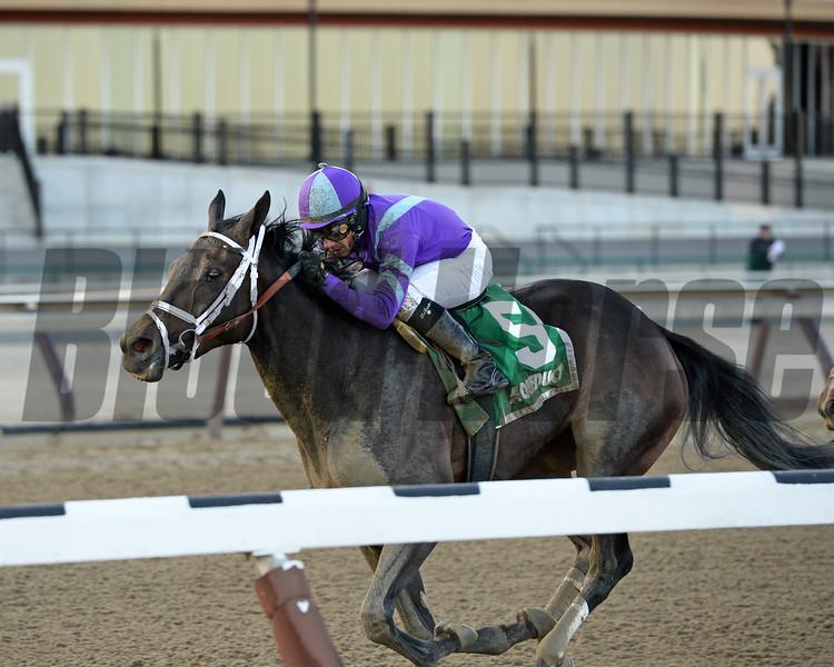 Mo d'Amour wins the 2016 Busher Stakes.<br /> Coglianese Photos/Joe Labozzetta