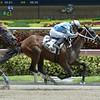 Cajun Delta Dawn wins the 2016 Cassidy Stakes.<br /> Coglianese Photos/Leslie Martin
