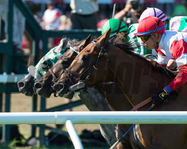 Shining Copper wins the Fasig-Tipton Lure Stakes at Saratoga.<br /> Coglianese Photos/Chelsea Durand