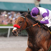 Nyquist wins the 2016 Florida Derby.<br /> Coglianese Photos/Kenny Martin
