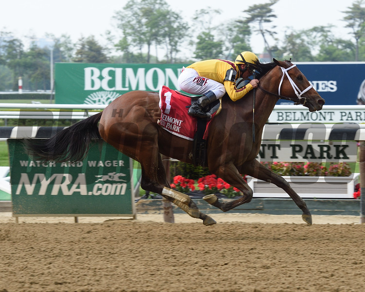 Cavorting wins the 2016 Ruffian Stakes.<br /> Coglianese Photos