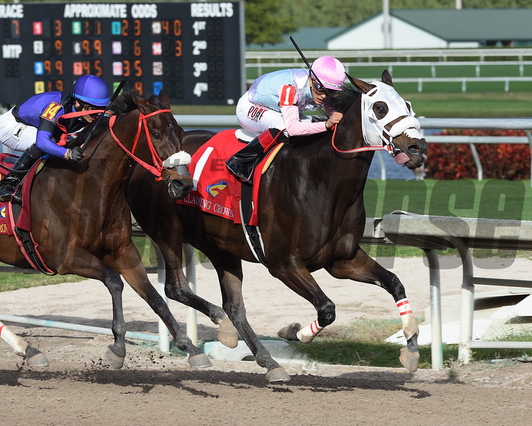 Chepstow wins the 2016 Claiming Crown Iron Horse<br /> Coglianese Photos