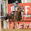 California Chrome and jockey Victor Espinoza win the Dubai World Cup at Meydan Racecourse on March 26, 2016. <br /> Photo by: Mathea Kelley/Dubai Racing Club