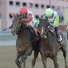 Connect wins the 2016 Cigar Mile<br /> Coglianese Photos/Adam Mooshian