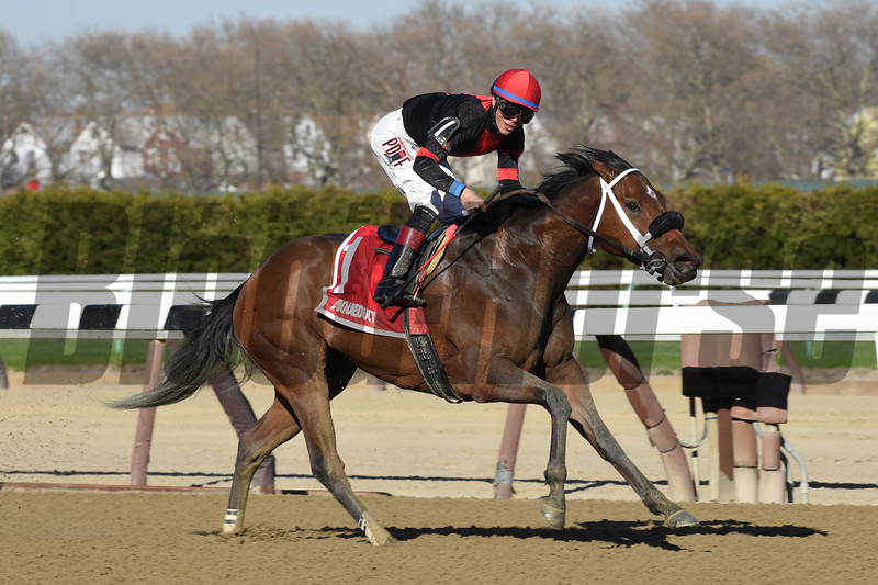Paulassilverlining wins the Distaff Handicap (gr. III) at Aqueduct April 17, 2016. <br /> Coglianese Photos