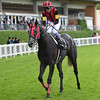 A Shin Hikari - Royal Ascot <br /> 6/15/16<br /> Mathea Kelley Photo