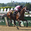 Far From Over - Allowance Win, June 24, 2016<br /> Coglianese Photos