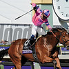 Champagne Room with Mario Gutierrez up wins the 14 Hands Winery Juvenile Fillies (gr. I) at Santa Anita on Nov. 5, 2016, in Arcadia, California.