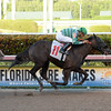 Itsbeenonmymind wins race 12 at Gulfstream Park Aug. 20<br /> Leslie King/Coglianese Photos