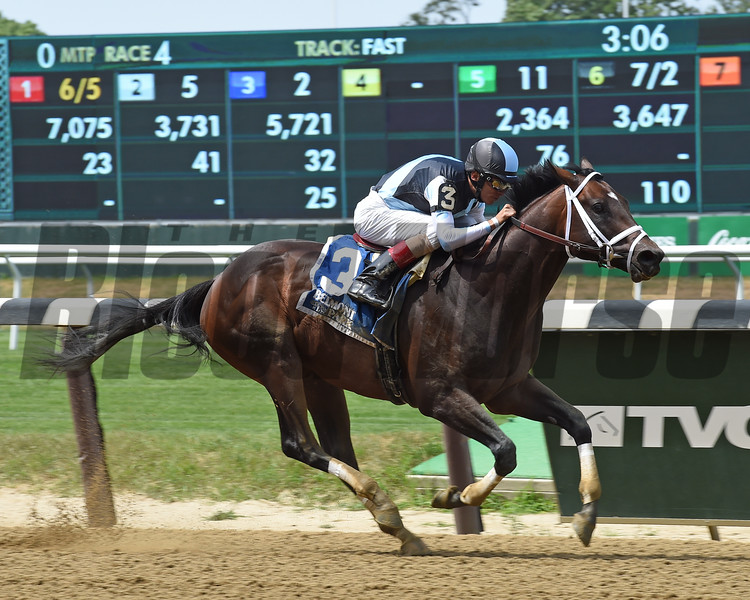 Comfort wins the State Dinner Stakes at Belmont Park July 4, 2016.<br /> Coglianese Photos