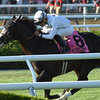 Tourist wins the 2016 Fourstardave.<br /> Coglianese Photos